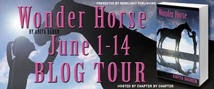 Wonder-Horse-Banner-cropped
